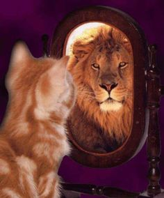 SEE YOUR INNER STRENGTH!<3