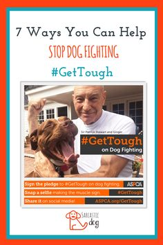 #GetTough against dog fighting for national dog fighting awareness day and join the ASPCA, Sir Patrick Stewart in the effort to end dog fighting and overturn BSL. ASPCA | BSL | Dog Fighting | Animal Rights | Animal Advocate | Get Tough |