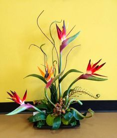 Tropical flowers like bird of paradise can always provide you the great quality of beauty with its bright colors. Tropical Flowers, Tropical Flower Arrangements, Flower Arrangement Designs, Exotic Flowers, Flower Designs, Ikebana Arrangements, Ikebana Flower Arrangement, Flowers Today, Silk Flowers