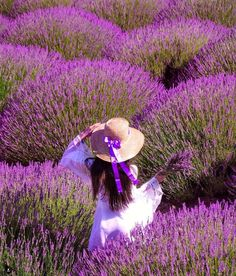 It doesn't matter how old you are, you still have dreams and ideas to share. Lavender Fields, Lavender Flowers, Purple Flowers, Wild Flowers, Purple Haze, Shades Of Purple, Mode Glamour, Purple Aesthetic, All Things Purple