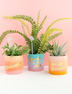 I used a gradient paint technique to DIY these planters, topped with gold foil tattoo paper with fun expressions. Painted Flower Pots, Painted Pots, Tattoo Papier, Easiest Flowers To Grow, Pots D'argile, Flash Tattoo, Cement Planters, Cactus Y Suculentas, Typography Tattoos