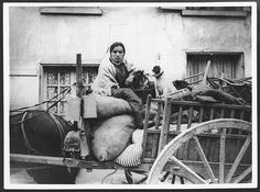 https://flic.kr/p/8am8LS | Pathetic scene. A refugee with her dog | Refugee woman and her dog, France, during World War I. This photograph, attributed to John Warwick Brooke, shows a woman and a small dog sitting on a horse-drawn cart which is loaded high with chairs, bedding and other belongings. There has been little recognition of the plight of refugees on the Western Front, although there are many accounts of the larger numbers of refugees from the Eastern Front.  [Original reads…
