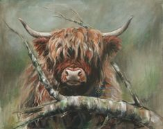 Highland Cow Art canvas prints by Hilary Barker at Mid Torrie Farm Callander in Scotland. Highland Cow Painting, Highland Cow Art, Scottish Highland Cow, Highland Cattle, Fluffy Cows, Mini Cows, Sheep Art, Barnyard Animals, Cute Animal Pictures