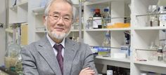 Biólogo japonés Yoshinori Oshumi gana el premio Nobel de Medicina