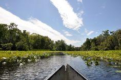 Paddle along the river at Wekiwa Springs State Park #FLStateParks