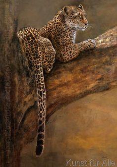 Leopard - - Zeichnung