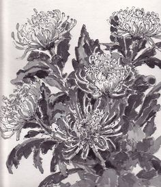 Green chrysanthemums, pin and ink, Mother's Day 2013  http:www.wearesoarty.BlogSpot.com.au