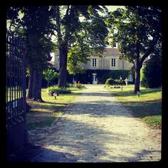 Saint Emilion. France