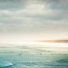 Idyllic Oceanside Landscapes Photographed by Andrew Smith travel ocean New Zealand landscapes Australia