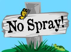 The No Spray Action Network opposes the government-mandated forced spraying of pesticides against the Glassy-Winged Sharpshooter. We are committed to non-violent means to protect human health and the environment.