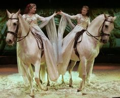 Cavalia went and saw this with a friend what an awesome show this was Extravaganza Horse Shows & Performances Learn about #HorseHealth #HorseColic www.loveyour.horse