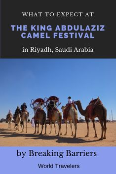 We spend a day at the King Abdulaziz Camel Festival located just outside Riyadh in Saudi Arabia and give a run down of what you can expect if you take a visit to this well run attraction. Riyadh, Saudi Arabia, World Traveler, Attraction, Camel, King, Day, Camels, Bactrian Camel
