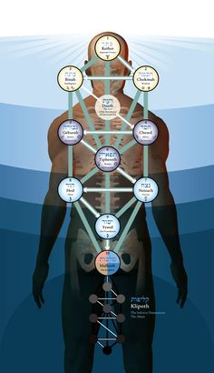 Alchemy, a Free Online Course Transmutation - 02 -  Kabbalah, the Tree of Life on the body http://gnosticteachings.org/courses/alchemy/3076-transmutation.html