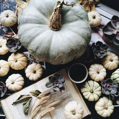 ImageFind images and videos about style, beauty and autumn on We Heart It - the app to get lost in what you love. Autumn Aesthetic, Autumn Day, Autumn Harvest, Harvest Time, Hello Autumn, Autumn Leaves, Winter, Summer Activities For Kids, White Pumpkins