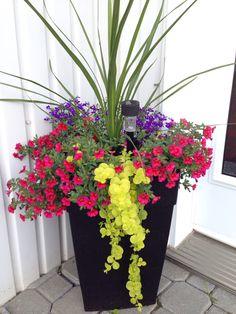 Impressive Summer Planter Design Ideas For Front Yard Decoration 18 Container Herb Garden, Container Gardening Vegetables, Container Flowers, Container Plants, Vegetable Gardening, Large Flower Pots, Flower Planters, Front Porch Flowers, Planters For Front Porch