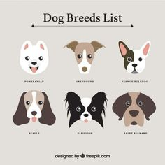 dog breed art