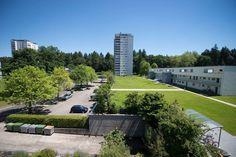 Wohnbaugenossenschaft Aarau 1961  An der General-Guisan-Strasse 42 in Aarau vermieten wir eine helle, gemütliche 4.5-Zi-Wohnung im 1. OG.  Ganze Wohnung Parkett- oder Laminatböden moderne Küche mit GK und GS - zwei Nasszellen - grosser Balkon - Keller  Beteiligung am Genossenschaftskapital mit CHF 16'000.— Einstellplätze sowie Abstellplätze können dazugemietet werden. Sidewalk, Kitchen Contemporary, Basement, Real Estates, Balcony, Side Walkway, Walkway, Walkways, Pavement