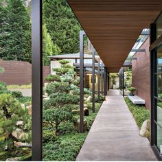 japanese garden design Surrounded by a Japanese garden oasis, this home by Stuart Silk Architects is nestled on a small bay on Lake Washington in Washington Park. Garden Oasis, Lush Garden, Garden Plants, Porches, Covered Walkway, Seattle Homes, Specimen Trees, Washington Park, Japanese Garden Design