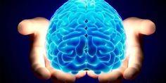 #Investigadores Finlandeses descubren método para mejorar rendimiento cerebral - PromarTV: PromarTV Investigadores Finlandeses descubren…