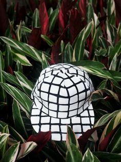 black and white checkered snapback