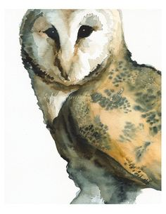 Barn Owl art- Mice on My Mind -large print after original watercolor via Etsy Owl Watercolor, Watercolor Animals, Watercolour Painting, Watercolors, Eagles, Owl Quilts, Owl Bags, Felt Owls, Owl Print