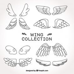 Collection of wings sketches , Wings Sketch, Wings Drawing, Love Drawings, Doodle Drawings, Wings Icon, Drawing Anime Clothes, Easy Doodle Art, Wing Tattoo Designs, Line Art Tattoos