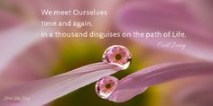 We meet Oᘮરselves time and again, in a thousand disguises, on the #path of #Life︵‿︵︵‿︵ Carl Jung #Quotes #Vesna