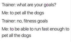 #petallthedogs
