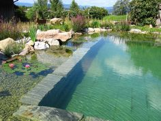 organic pool in nature, plants and natural stones Swimming Pool Pond, Natural Swimming Ponds, Swiming Pool, Natural Pond, Natural Stones, Garden Pool, Water Garden, Diy Pool, Dream Pools