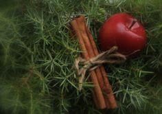 Suvikumpu: HAVUSYDÄN JA -KRANSSI - ohje Diy Wreath, Carrots, Christmas Wreaths, Vegetables, Crown Flower, Wreaths Crafts, Carrot, Vegetable Recipes, Diy Garland
