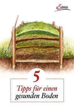 Er ist die wichtigste Grundlage für ein ertragreiches Gartenjahr: Der Boden. Hier die 5 besten Tipps von unserer Expertin Veronika Schubert, um seine Gartenerde zu verbessern. #gartenerdeverbessern #gartenwissen