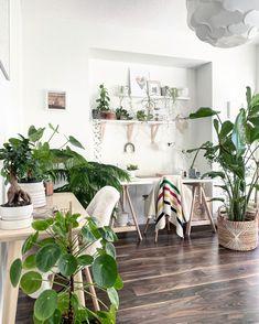 Unique plant decorating ideas for your home. #plantstyling #plantdecor #decoratingwithplants #homedecor #houseplants