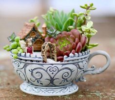 Succulent Teacup Fairy Garden  - CountryLiving.com