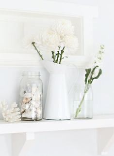 white flower and shells