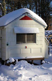 Community Challenge: Frozen Water Solutions -- Community Chickens