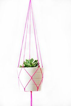 Simple Modern Macrame Plant Hanger - 42 inches long - green - pink - orange - yellow - white by TheVintageLoop on Etsy Red And Pink, Blue And White, Orange Yellow, Blue Green, White Pot, Black, Modern Macrame, Metal Plant Hangers, Hanging Planters