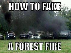 Forest fire.. Roll coal!