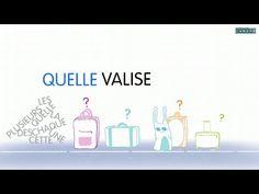 Le rôle des déterminants (1/2) - YouTube Best Teacher, Teacher Stuff, Discipline, Film D'animation, French Immersion, France, Second Grade, Grammar, Servent