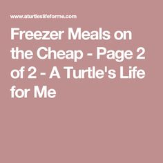 Freezer Meals on the Cheap - Page 2 of 2 - A Turtle's Life for Me