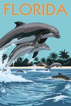 Florida - Dolphins Jumping - Lantern Press Poster Pensacola Beach Florida, Fort Myers Beach Florida, Panama City Beach Florida, Panama City Panama, Florida Beaches, West Florida, Clearwater Florida, Florida Living, Sarasota Florida