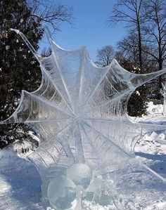 Funny pictures about Frozen Spider Web. Oh, and cool pics about Frozen Spider Web. Also, Frozen Spider Web photos. All Nature, Science And Nature, Amazing Nature, Cool Pictures, Cool Photos, Random Pictures, Funny Pictures, Amazing Photos, Ice Art