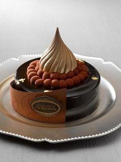 Chocolate Delicacies by Emmanuel Ryon pour Café Pouchkine Just Desserts, Delicious Desserts, Dessert Recipes, Mini Cakes, Cupcake Cakes, Patisserie Fine, Decoration Patisserie, I Love Chocolate, Chocolate Cakes