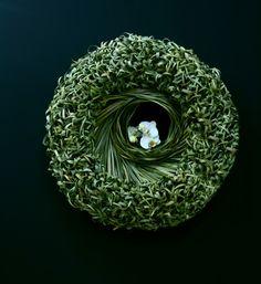 Stef Adriaenssens http://www.floristiek.com/ENG/gallery.html