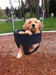 Kid park, dog park. Any park is good for mé. M