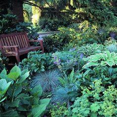 shape garden ideas - Yahoo Image Search Results