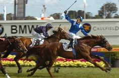 caulfield cup - Norton Safe Search