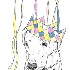 Party Animal ! Labrador