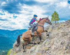 Going the Distance: Endurance Riding. Check out endurance riding, and discover why it has such universal appeal.