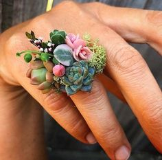Tips - Gardener propose with this ring.Gardening Tips - Gardener propose with this ring. Ikebana, Rose Gold Bridal Jewelry, Flower Corsage, Real Plants, Succulents Garden, Succulent Plants, Succulent Ideas, Garden Roses, Arte Floral