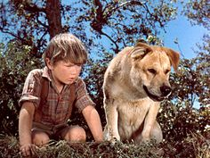 Old Yeller Actor Kevin Corcoran Dies at 66 http://www.people.com/article/kevin-corcoran-dies-age-66